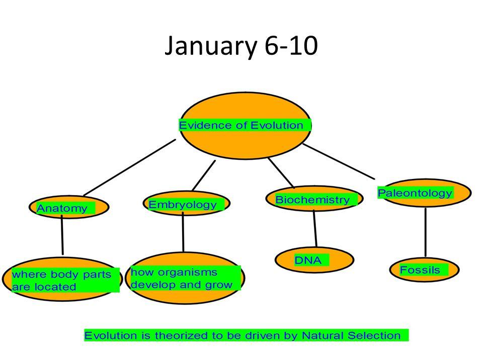 January 6-10