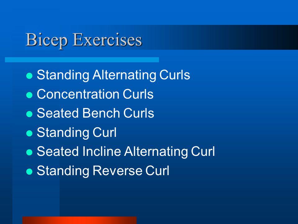 Bicep Exercises Standing Alternating Curls Concentration Curls Seated Bench Curls Standing Curl Seated Incline Alternating Curl Standing Reverse Curl