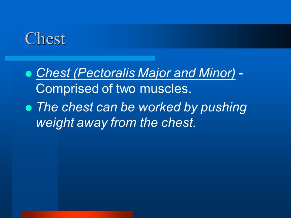 Chest Chest (Pectoralis Major and Minor) - Comprised of two muscles.