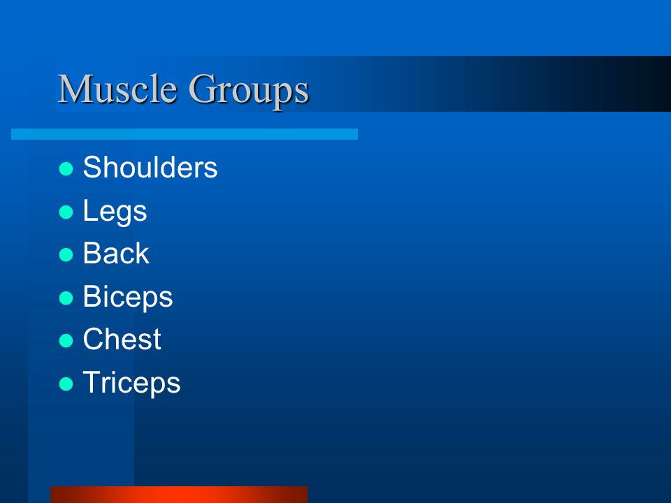Muscle Groups Shoulders Legs Back Biceps Chest Triceps