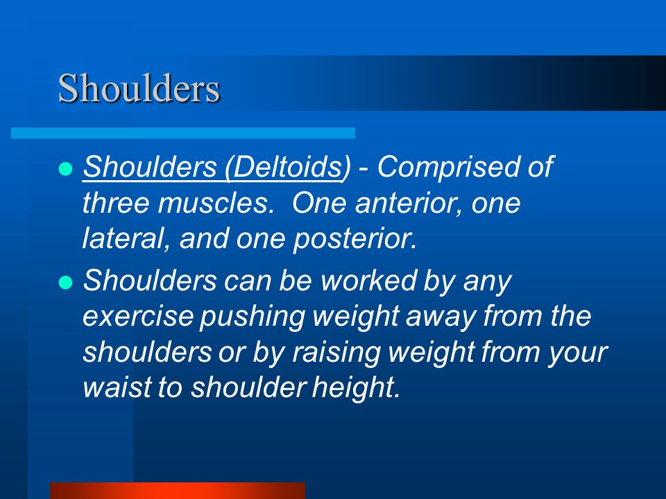 Shoulders Shoulders (Deltoids) - Comprised of three muscles.