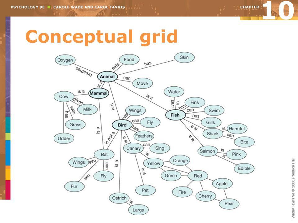 Conceptual grid 10
