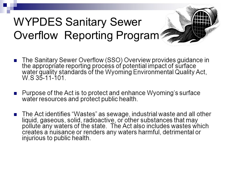 Sanitary Sewer Overflow (SSO) Definition and Reporting An unintentional discharge of raw sewage from any sanitary sewer collection or treatment system either publicly or privately owned.