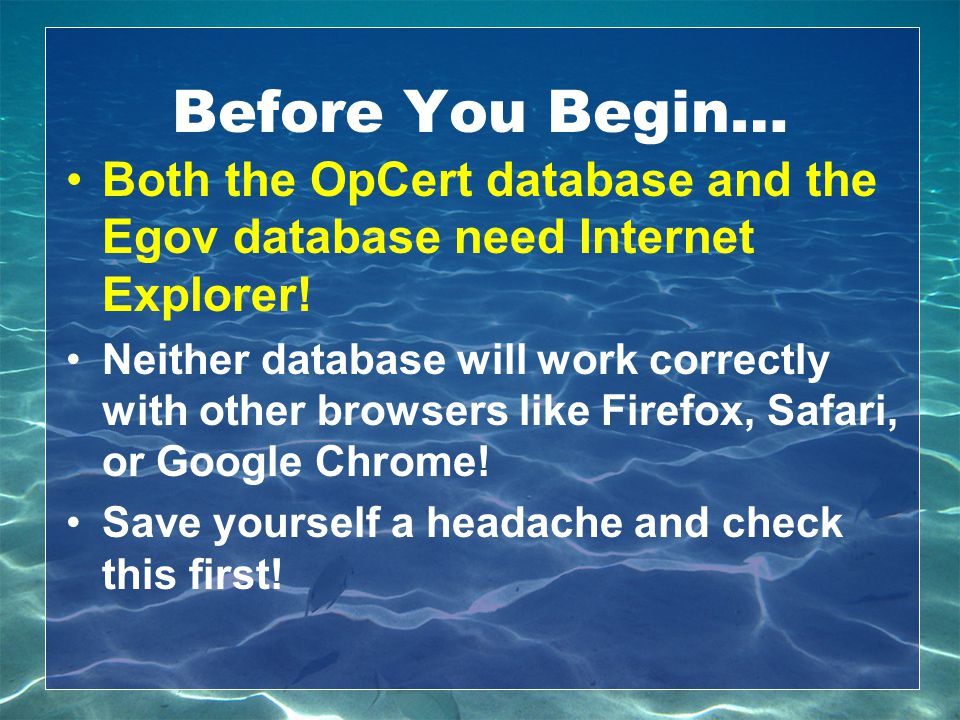 Before You Begin… Both the OpCert database and the Egov database need Internet Explorer! Neither database will work correctly with other browsers like