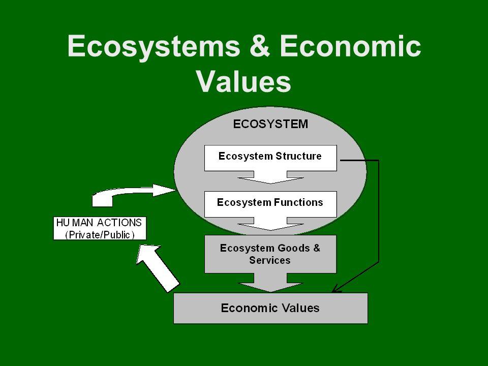 Ecosystems & Economic Values