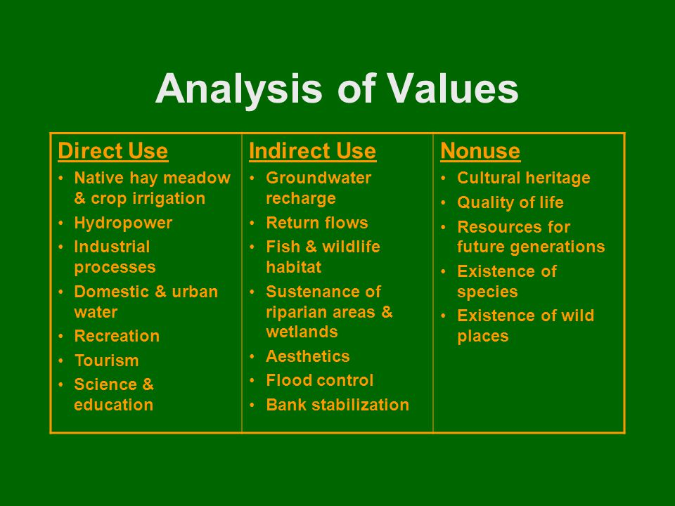 Analysis of Values Direct Use Native hay meadow & crop irrigation Hydropower Industrial processes Domestic & urban water Recreation Tourism Science & education Indirect Use Groundwater recharge Return flows Fish & wildlife habitat Sustenance of riparian areas & wetlands Aesthetics Flood control Bank stabilization Nonuse Cultural heritage Quality of life Resources for future generations Existence of species Existence of wild places