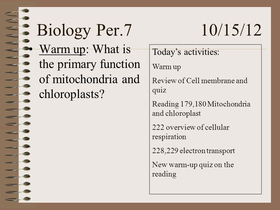 Biology Per.7 10/15/12 Warm up: What is the primary function of mitochondria and chloroplasts.