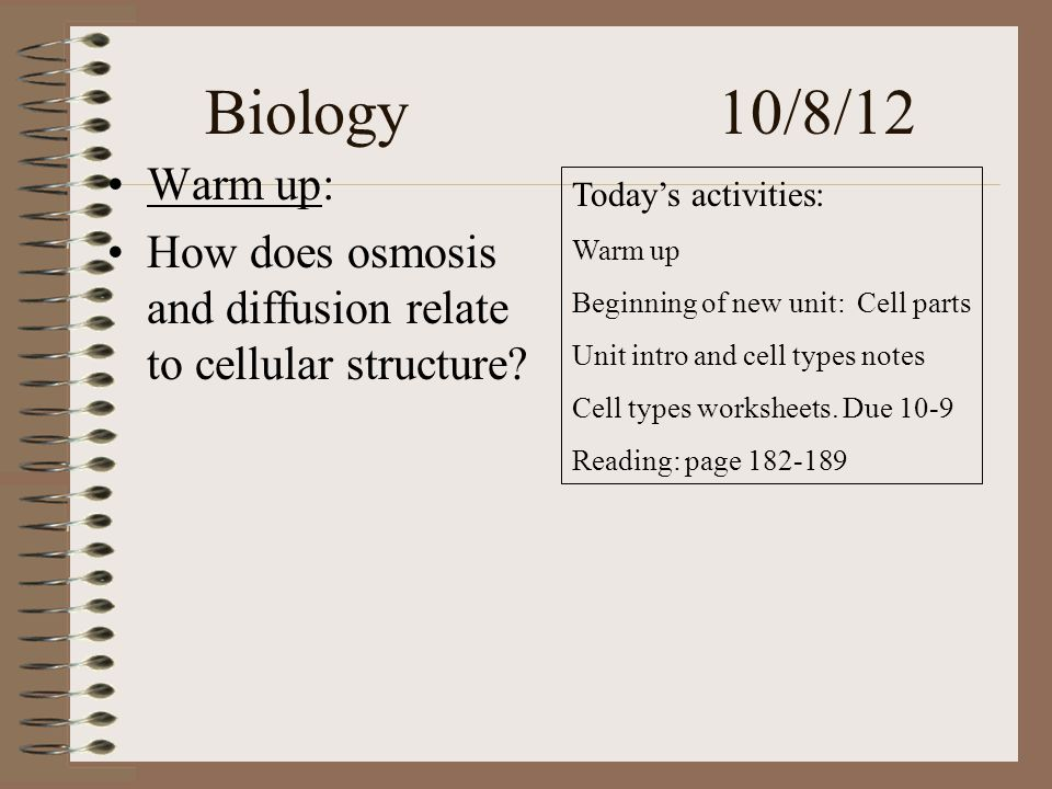 Biology 10/8/12 Warm up: How does osmosis and diffusion relate to cellular structure.