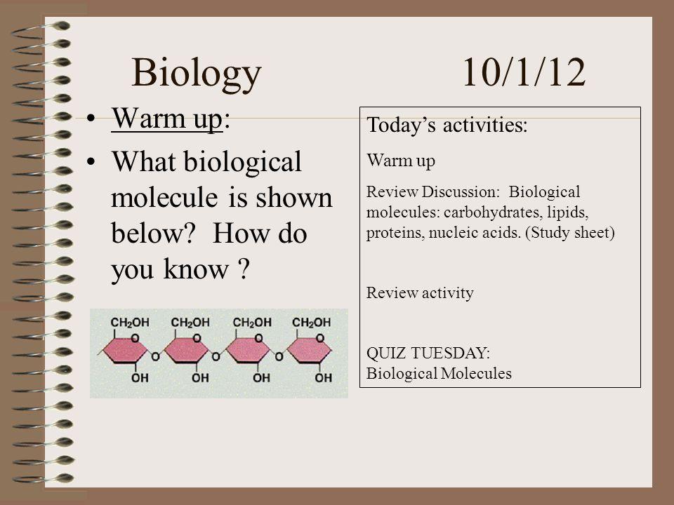 Biology 10/1/12 Warm up: What biological molecule is shown below.