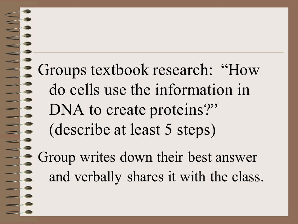 Groups textbook research: How do cells use the information in DNA to create proteins? (describe at least 5 steps) Group writes down their best answer and verbally shares it with the class.