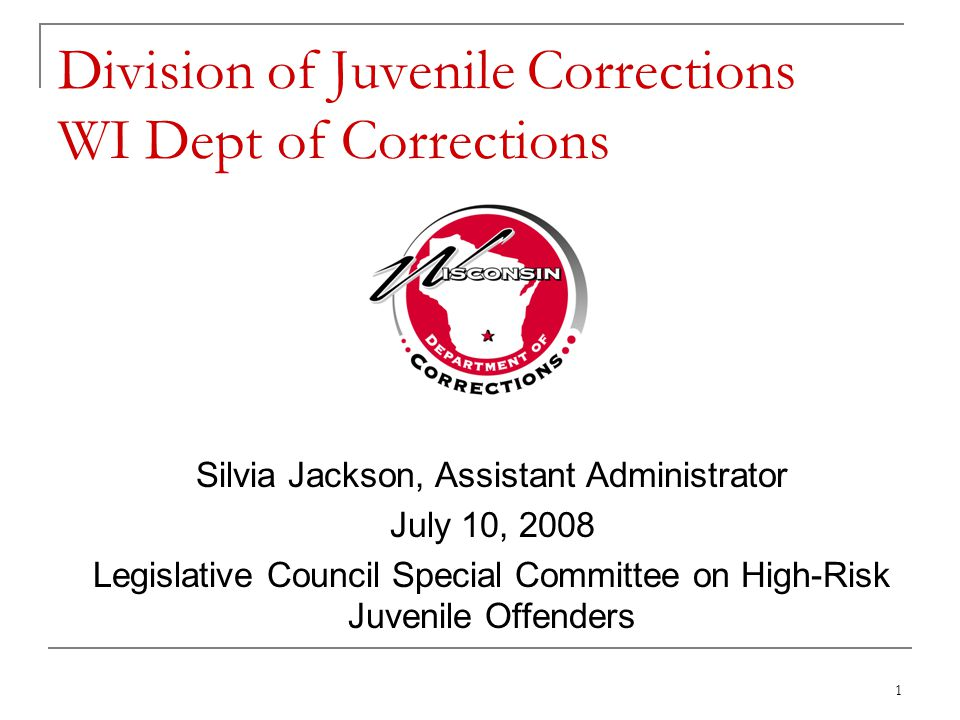 2 Overview of the Division of Juvenile Corrections (DJC) DJC Institutions and Community Programs Staffing and Budget Information Commitment Data for Calendar Year 2007 Program Participation and Outcome Data Serious Juvenile Offender Disposition and Data – Shelley Hagan