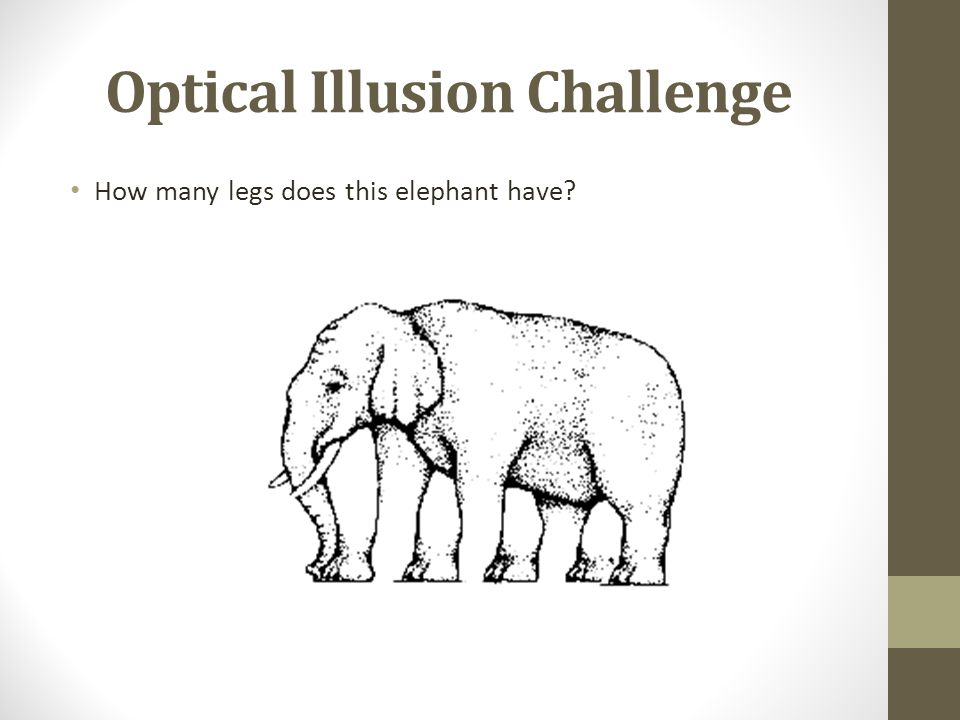 Optical Illusion Challenge How many legs does this elephant have?