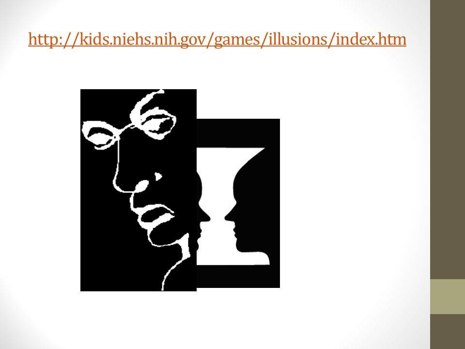 http://kids.niehs.nih.gov/games/illusions/index.htm
