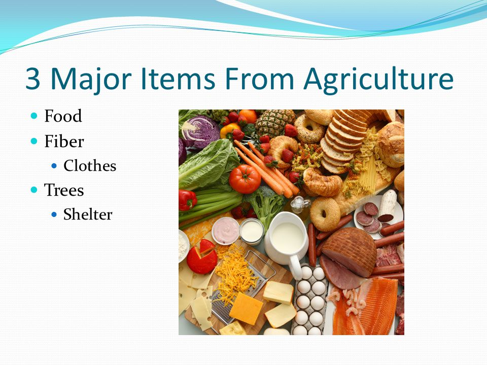 3 Major Items From Agriculture Food Fiber Clothes Trees Shelter