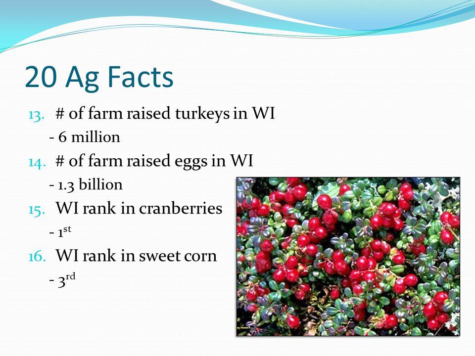 20 Ag Facts 13. # of farm raised turkeys in WI - 6 million 14. # of farm raised eggs in WI - 1.3 billion 15. WI rank in cranberries - 1 st 16. WI rank