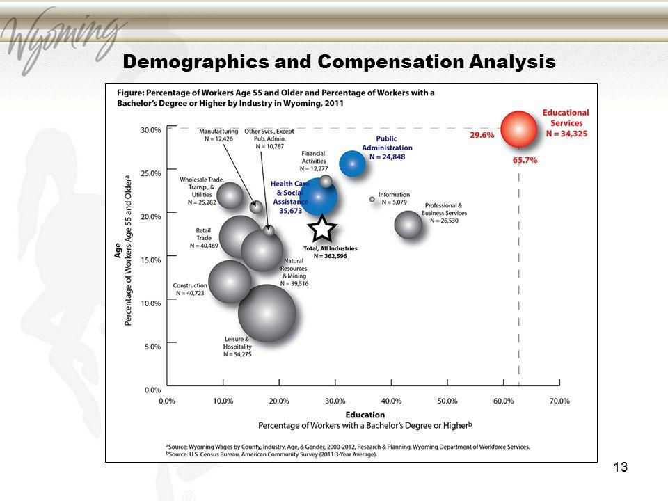 Demographics and Compensation Analysis 13