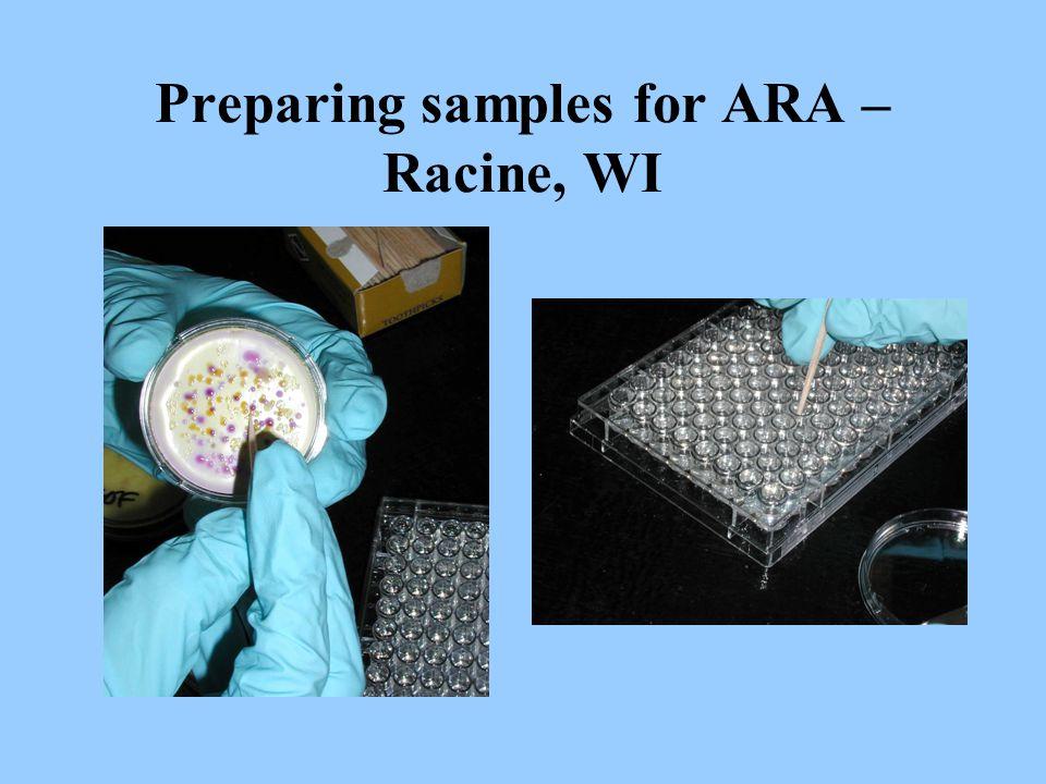 Preparing samples for ARA – Racine, WI