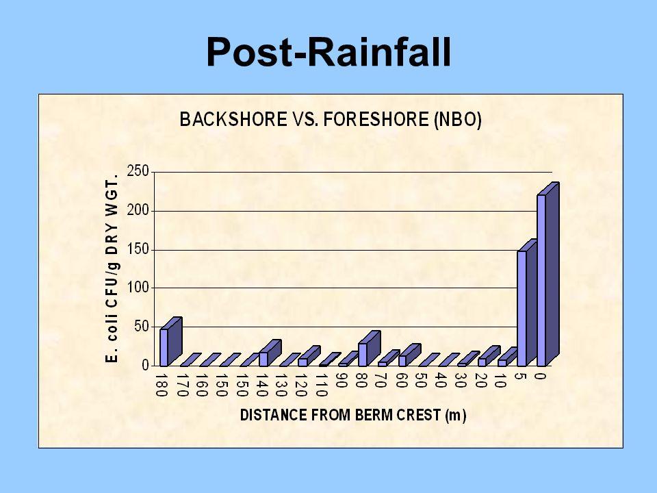 Post-Rainfall