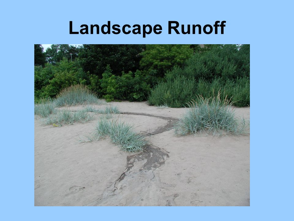 Landscape Runoff