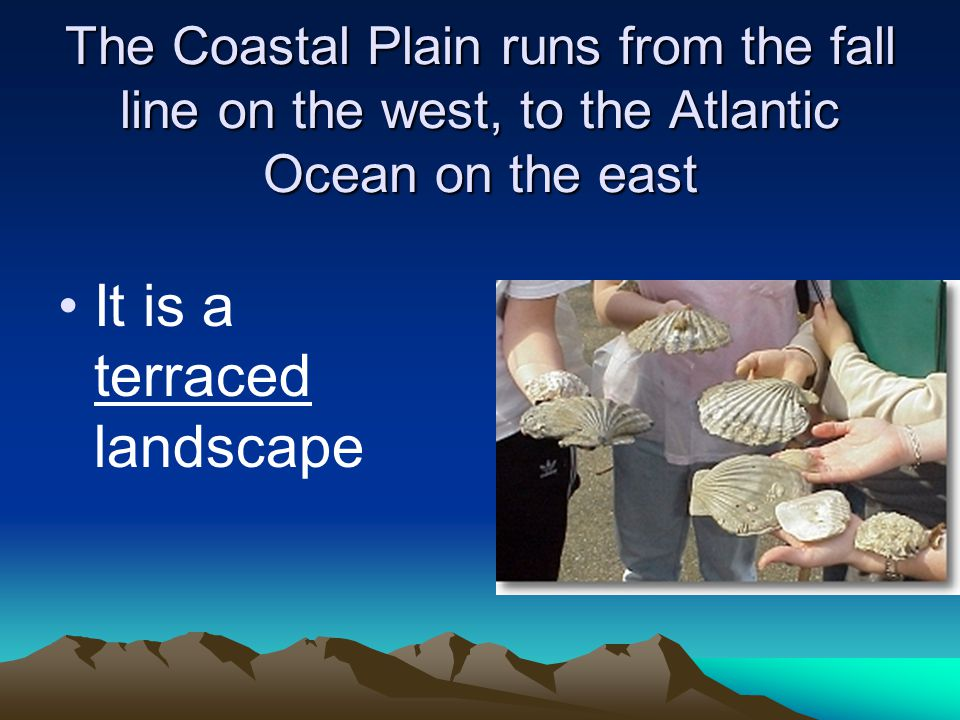 The Coastal Plain runs from the fall line on the west, to the Atlantic Ocean on the east It is a terraced landscape