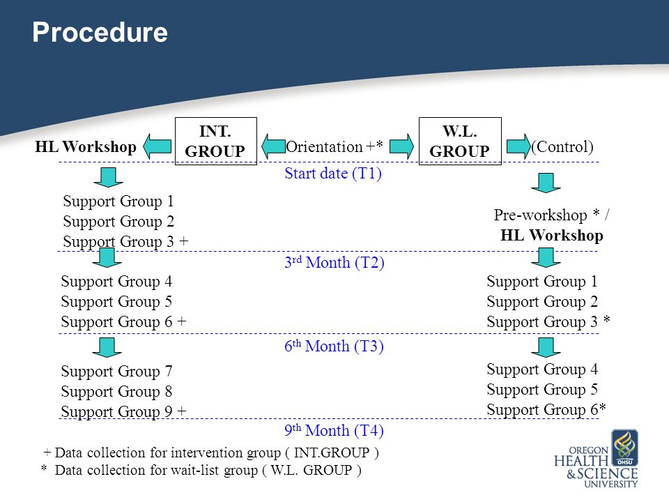 Procedure 3 rd Month (T2) Pre-workshop * / HL Workshop Support Group 1 Support Group 2 Support Group 3 + 6 th Month (T3) Support Group 4 Support Group