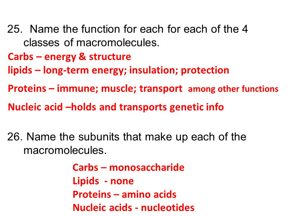 25. Name the function for each for each of the 4 classes of macromolecules. 26. Name the subunits that make up each of the macromolecules. Carbs – ene