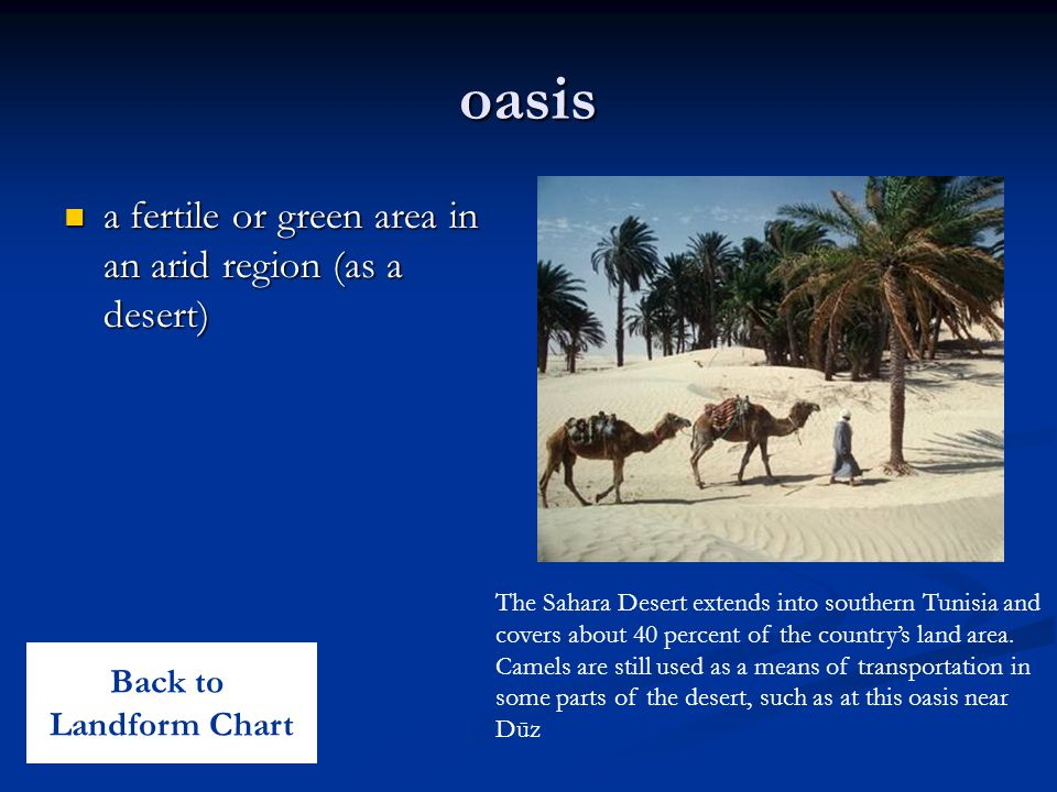 oasis a fertile or green area in an arid region (as a desert) a fertile or green area in an arid region (as a desert) The Sahara Desert extends into s