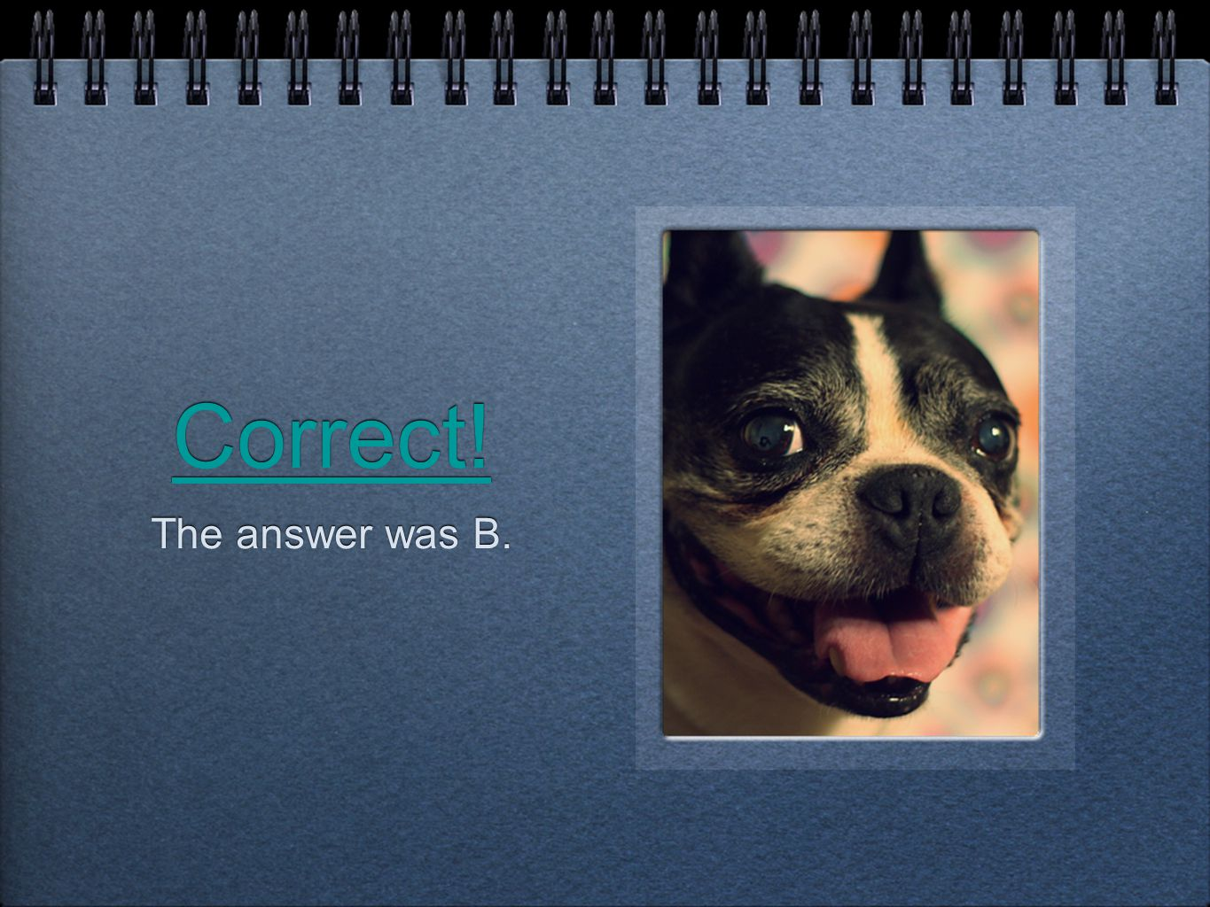 Correct! The answer was B.