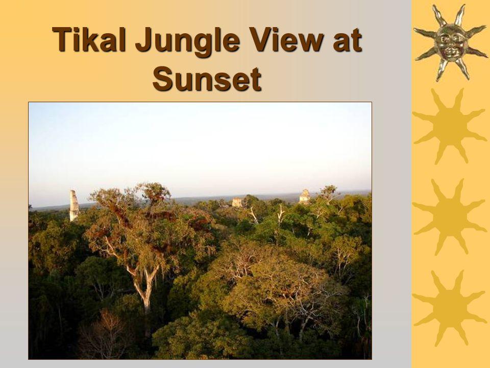 Tikal - Wall Mask of the Rain God