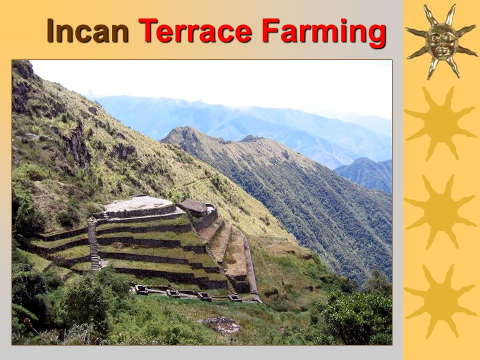Incan Suspension Bridges