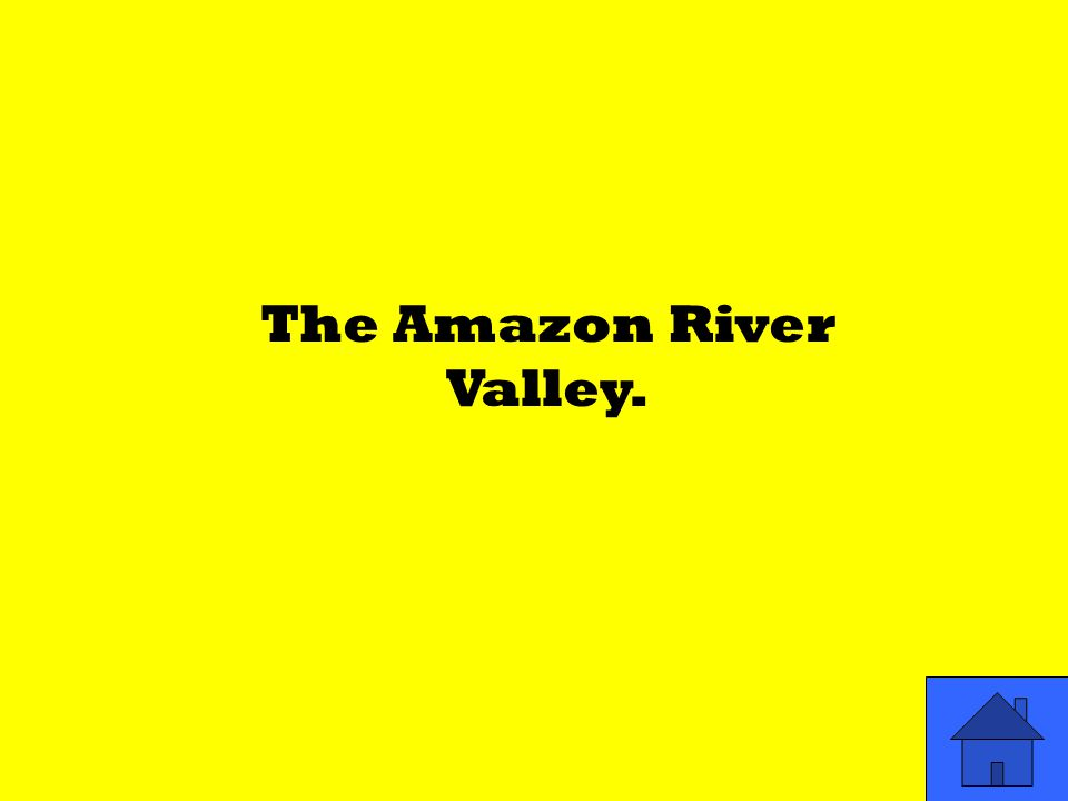 The Amazon River Valley.