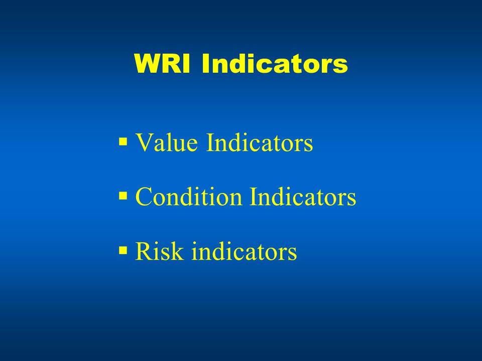 WRI Indicators  Value Indicators  Condition Indicators  Risk indicators