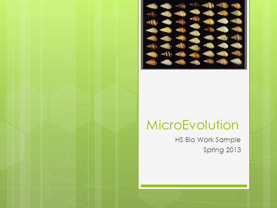 MicroEvolution HS Bio Work Sample Spring 2013