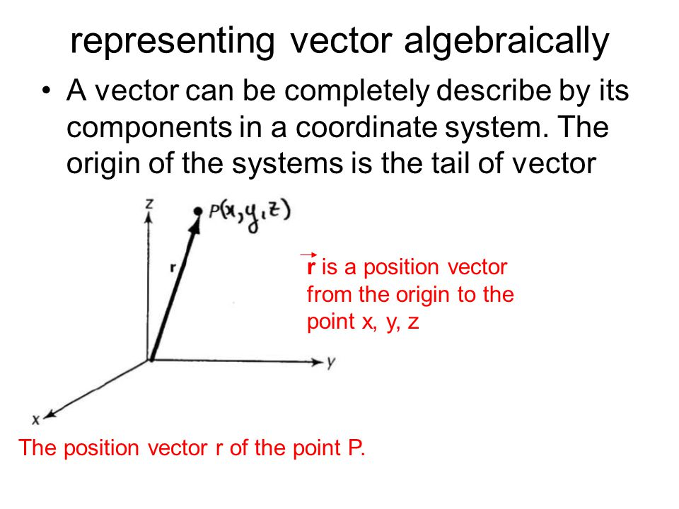 representing vector algebraically A vector can be completely describe by its components in a coordinate system. The origin of the systems is the tail