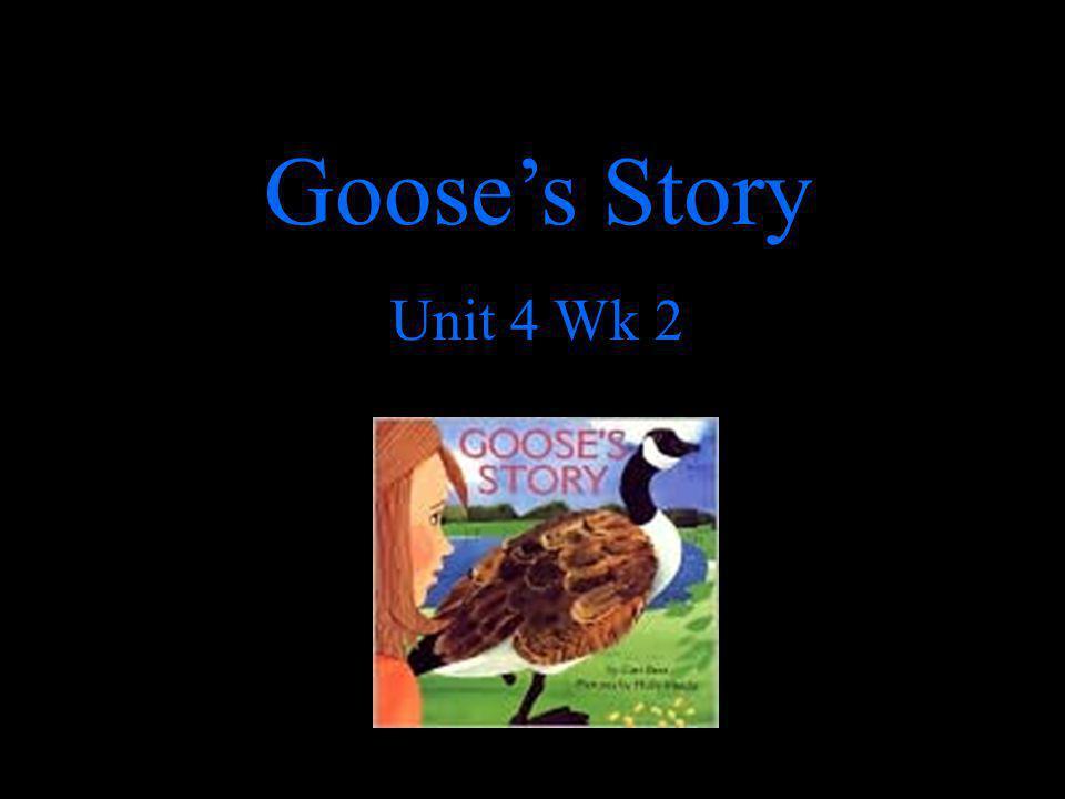 Goose's Story Unit 4 Wk 2