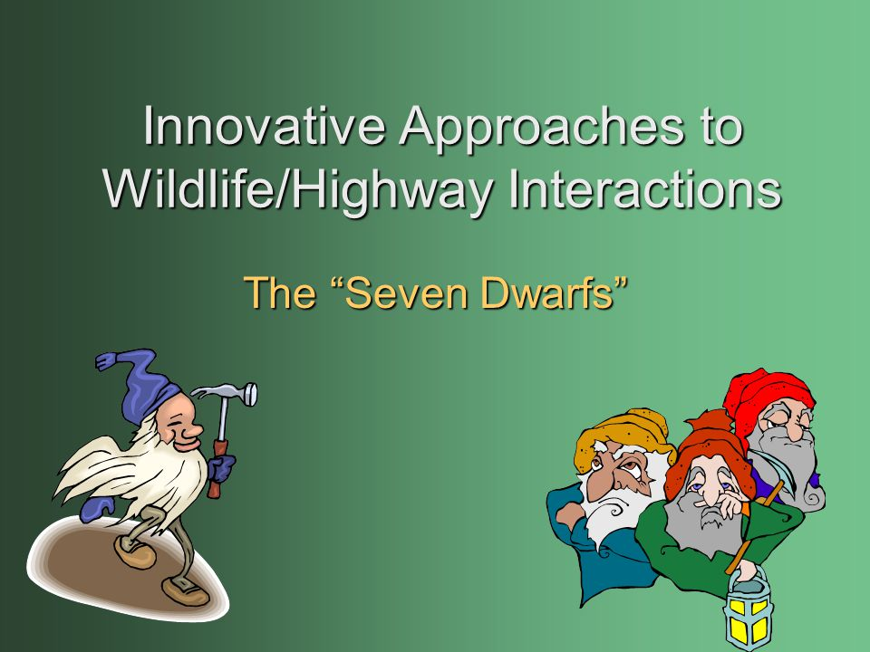 Innovative Approaches to Wildlife/Highway Interactions The Seven Dwarfs