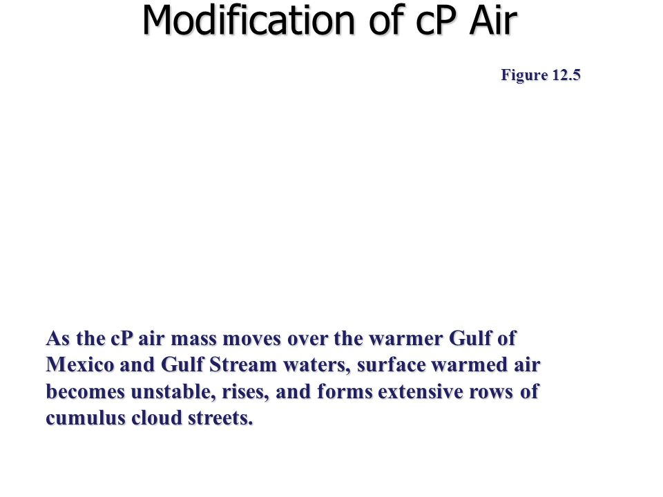 Modification of cP Air Figure 12.5 As the cP air mass moves over the warmer Gulf of Mexico and Gulf Stream waters, surface warmed air becomes unstable, rises, and forms extensive rows of cumulus cloud streets.