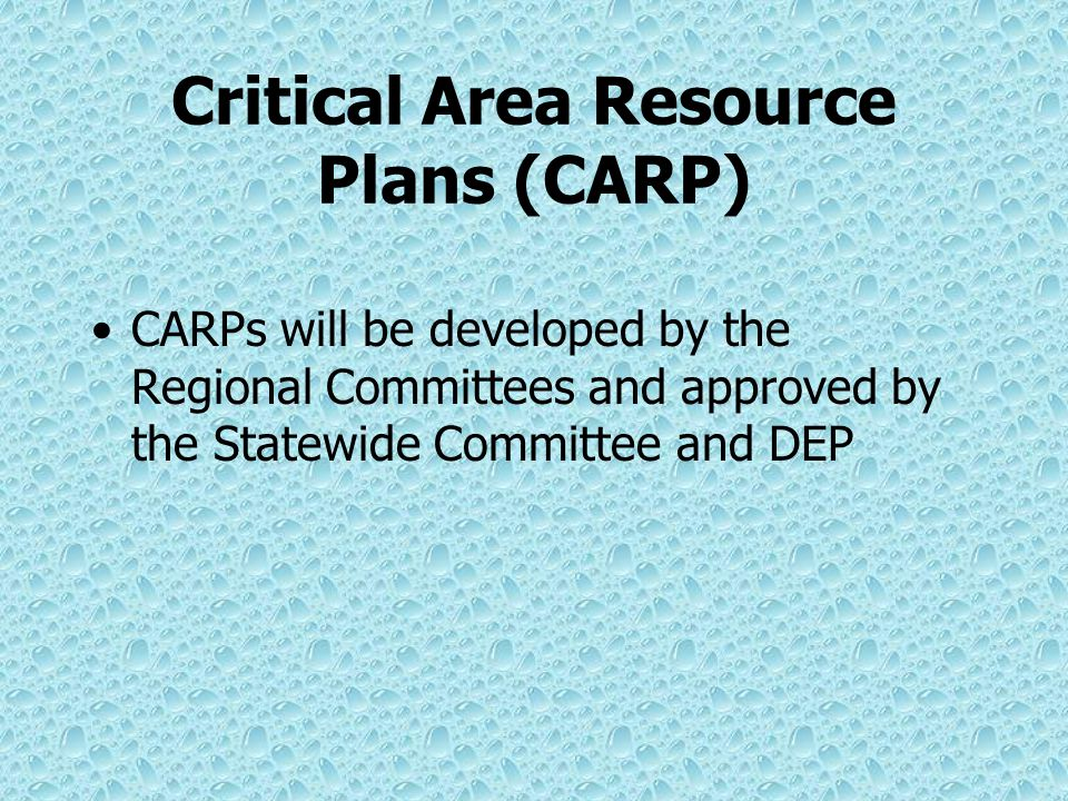 Critical Water Planning Areas CWPAs may be designated: In the State Water Plan In advance of the State Water Plan by the Statewide committee and DEP, upon recommendation of a Regional Committee, if justified by evidence developed during the planning process