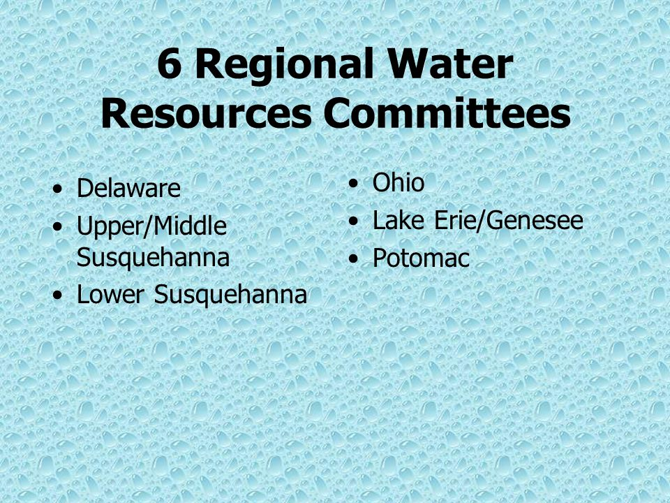 Regional Water Resources Committees Purpose: –Guide the development of Regional Plan Component and recommend to Statewide Committee for Incorporation
