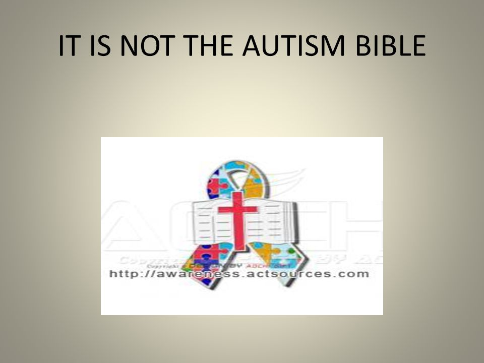 IT IS NOT THE AUTISM BIBLE