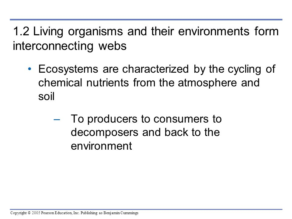 Copyright © 2005 Pearson Education, Inc. Publishing as Benjamin Cummings 1.2 Living organisms and their environments form interconnecting webs Ecosyst