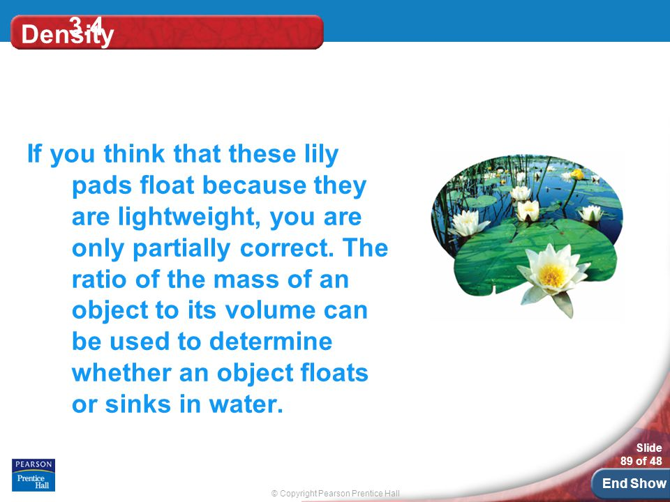 © Copyright Pearson Prentice Hall Slide 89 of 48 End Show Density If you think that these lily pads float because they are lightweight, you are only partially correct.