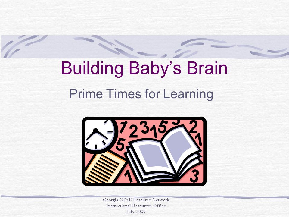 Building Baby's Brain Prime Times for Learning Georgia CTAE Resource Network Instructional Resources Office July 2009
