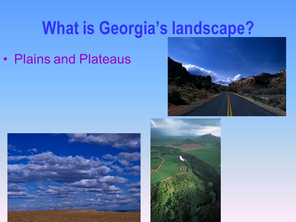 What is Georgia's landscape? Plains and Plateaus