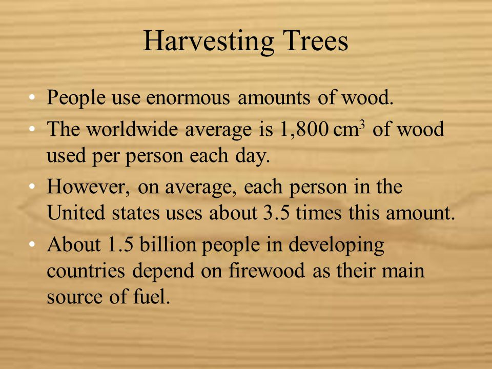 Harvesting Trees The timber industry classifies forest lands into three categories: Virgin forests: forests that have never been cut.
