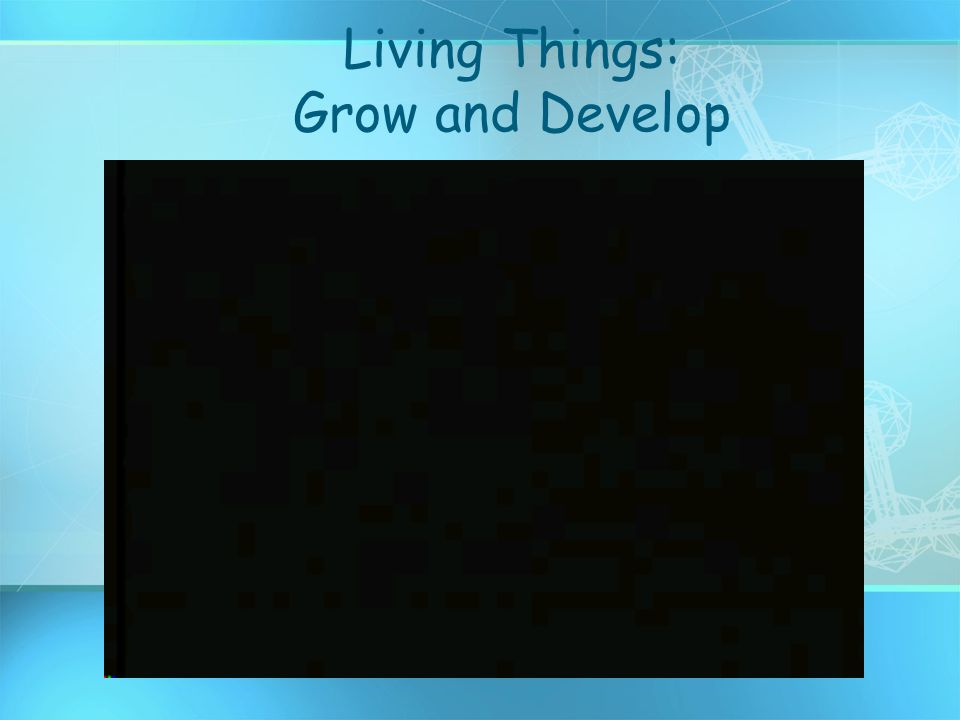 Living Things: Grow and Develop