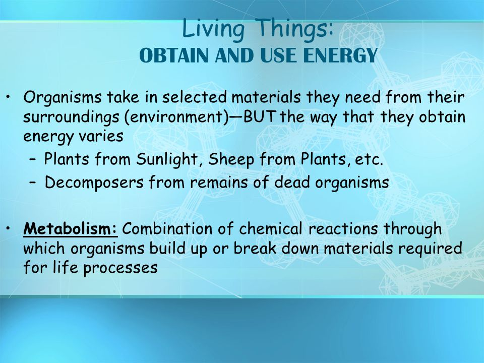 Living Things: OBTAIN AND USE ENERGY Organisms take in selected materials they need from their surroundings (environment)—BUT the way that they obtain