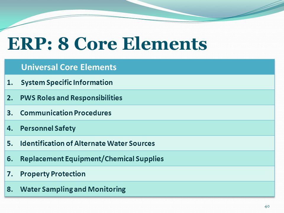 ERP: 8 Core Elements 40