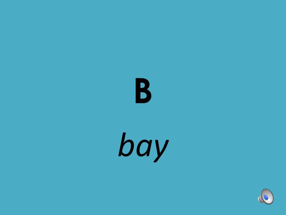 B bay