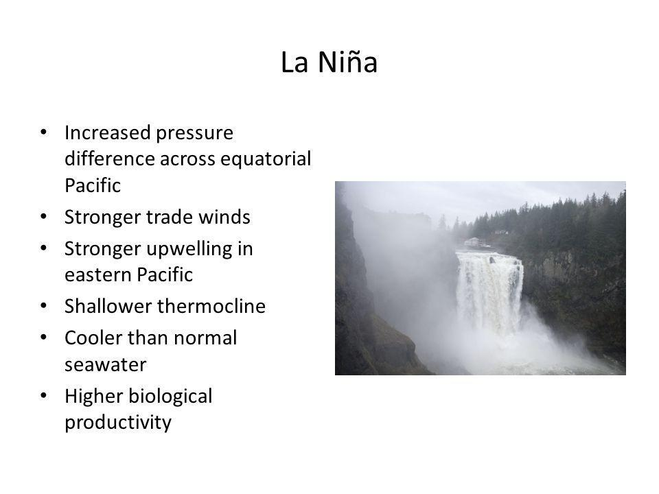 La Niña Increased pressure difference across equatorial Pacific Stronger trade winds Stronger upwelling in eastern Pacific Shallower thermocline Cooler than normal seawater Higher biological productivity